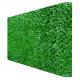 Зелёный забор - Green Mix